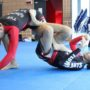 Brazilian Ju Jitsu image